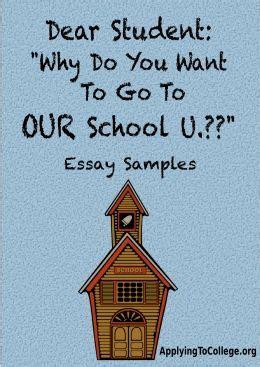 Sample college admission essay format